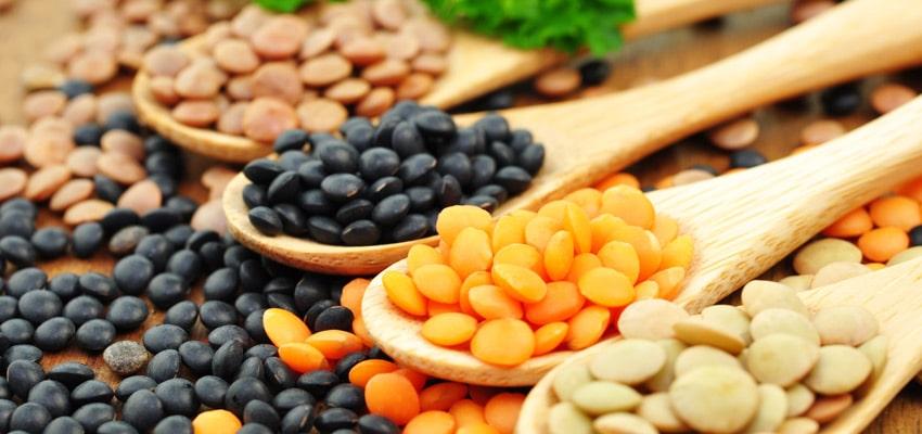 Les aliments sans gluten : LÉGUMES SECS soja, pois chiches, lentilles, haricots rouges, fèves