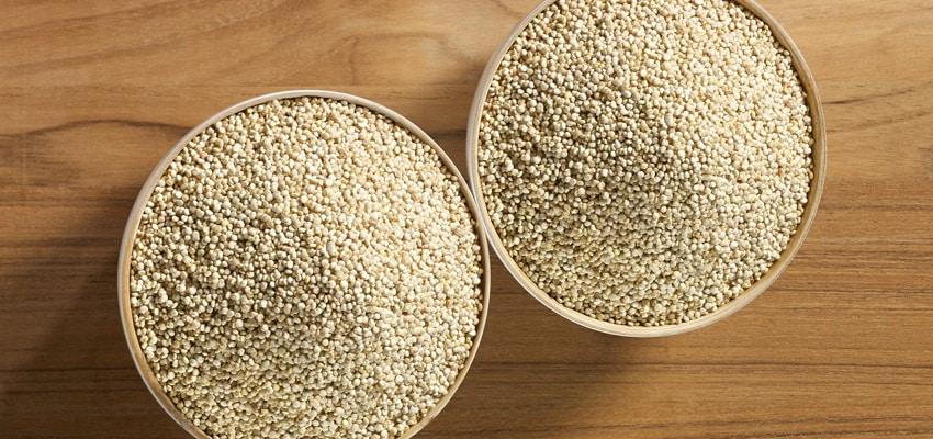 Les aliments sans gluten : Le quinoa